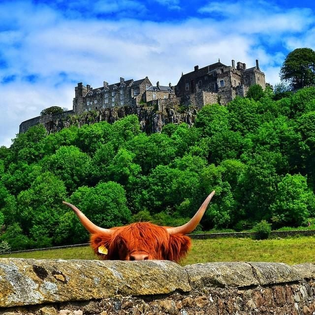 Stirling Gin Getaway from £47.50